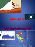 20. Malaria