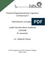 Delimitación Conceptual (Practica Departamental)