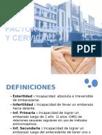 Infertilidad Factor Uterino y Cervical