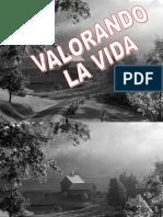 Valorandolavida_lacasagrisWan