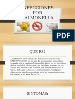Infecciones Por Salmonella