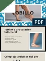 Tobillo-Kinesin