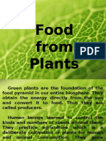 Food From Plant Ppt
