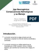 Vegiga Neurogenica Consecuencias Nefrologicas y Su Manejo