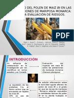 expo alimentaria ogm.pptx
