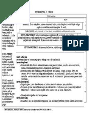 Historia Natural De Rubeola Rtt Especialidades Medicas