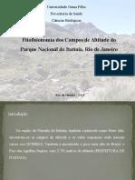 Campos de Altitude - Itatiaia
