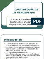 Clase1psicopatologia Dela Percepcion