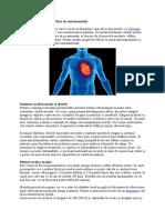 Utilizarea Ritmului Cardiac in Antrenament