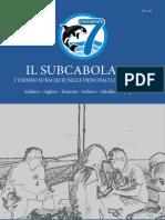 Il Subcabolario