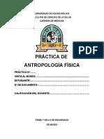 Antroplogia Formato de Practica Museo