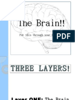 The Brain!!