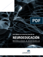 DEN - Folleto.pdf