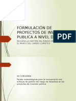 Formulacion de proyectos de inversion publica