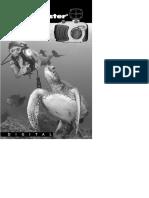 Reefmaster DC250 Instruction Manual.pdf