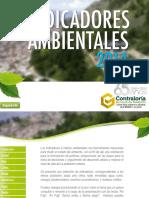 Indicadores 2014 - Info Ambiental 2015