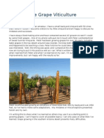 Desert Wine Grape Viticulture 2