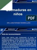 Guia Grafica Quemadu 20234