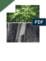 Patologia Estructural Edificacion de 5 Pisos