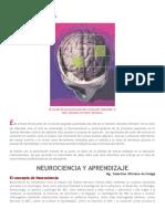Neurociencia y Aprendizaje