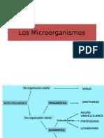 Las células procariótas.ppt