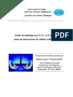 TFEMarielaureCollignon.pdf
