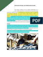 Deshidratación Delgas Natural Con Tamices Moleculares