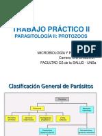 (Protozoarios) - Enfermeria 2016