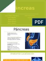 4. Páncreas (1).pptx