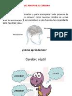 Cerebro Que Aprende