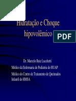 hidratacao e choque hipovolemico (1).pdf