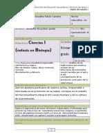 Guión+de+tutoría+CHAGO+MAYO+12