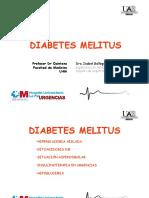 diabetes diapos.pdf