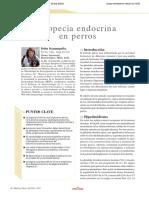 alopecia endócrina.pdf