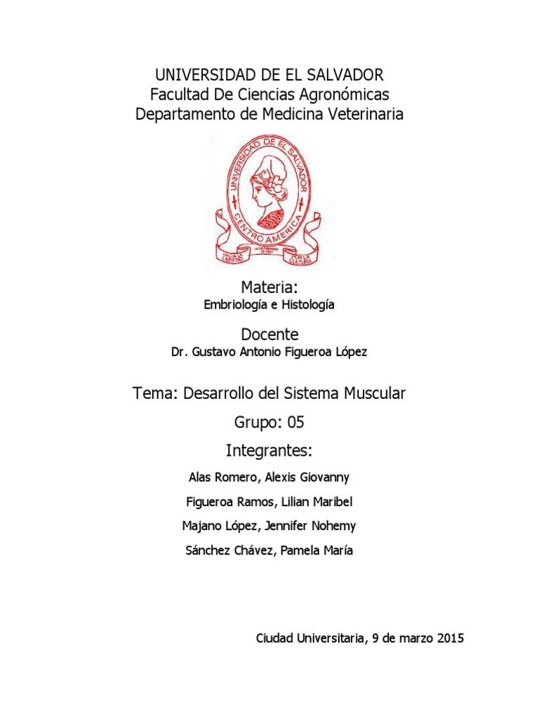Lujo Hoja De Examen 12 Anatomía Macroscópica Del Sistema Muscular ...