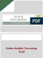 OLAPandMining.pdf