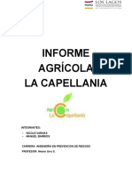 Informe La Capellania Modificado