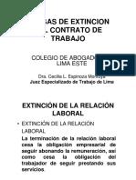 causasex.pdf