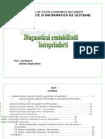 Diagnosticul Rentabilitatii Intreprinderii