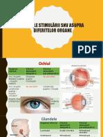 Efectele Stimularii SNV Asupra Diferitelor Organe