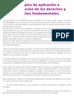 Principios de Aplicación e Interpretación de Los Derechos y Garantías Fundamentales
