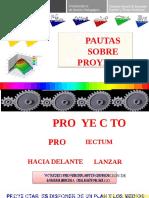000 PAUTAS SOBRE PROYECTOS.docx