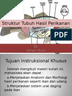 Modul 2 DDTI (Struktur Tubuh Hasil Perikanan)