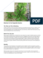 mulching your veggie bed