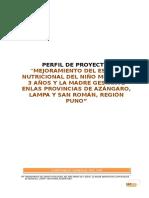 PIP Nutrición zona Centro corregido.docx