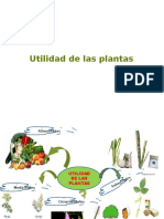 utilidad de las plantas-