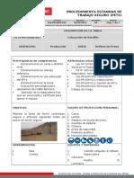 SGI-PR-SSM-032 Procedimiento Estandar de Trabajo Seguro (PETS) Colocacion de Bordillo