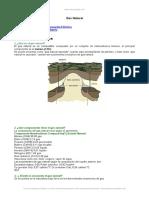 gas-natural-aspectos-generales.doc
