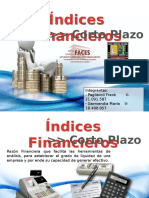 Indices Financieros (1)