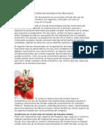 El Comercio y La Exportación de Productos Mexicanos